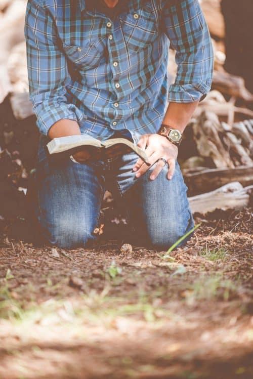 El libro que te gustaría leer editorial poesía Editorial Poesía eres tú. Publicar un libro. ben white 128602 Medium 500x749
