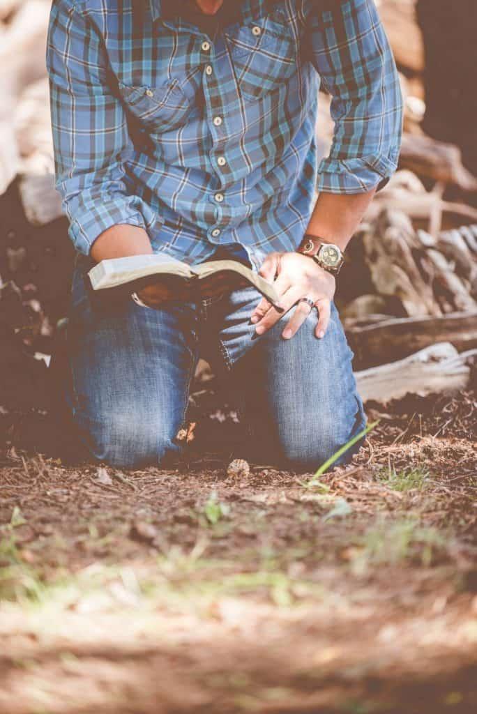 Editorial poesía, editorial de poesía, publicar un libro, publicar libro, publicar un libro de poesía, editoriales españolas, poesía, poetas, libro de poesía